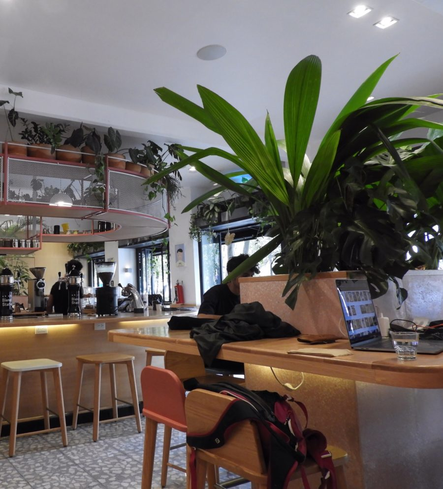 Cool Cafés in Mexico City: Coyoacan and Roma Norte